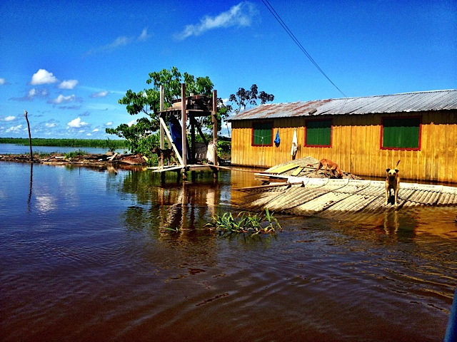 Urgent: Amazon Flooding Devastation